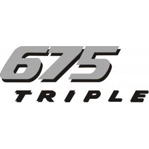 2x Pegatina Daytona 675 laterales