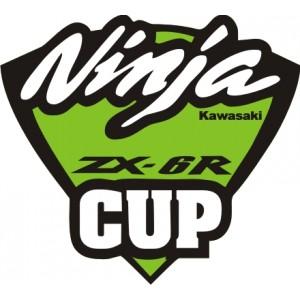 2x Pegatinas Kawasaki Ninja CUP