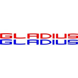 2x Pegatinas suzuki Gladius